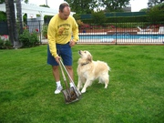 Best Eco-Friendly Pet Waste Process By Ecoscoopers